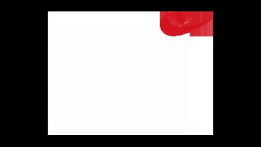 NOLOC Vereniging voor loopbaanprofessionals